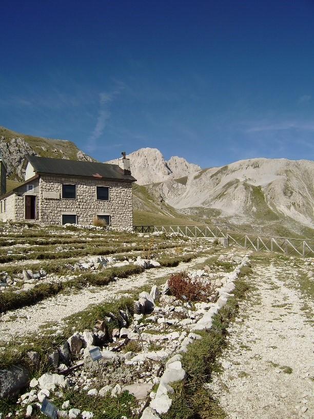 1_Il Giardino Alpino di Campo Imperatore sullo sfondo il Corno Grande