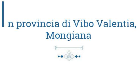 In_provincia_di_vibo_valentia