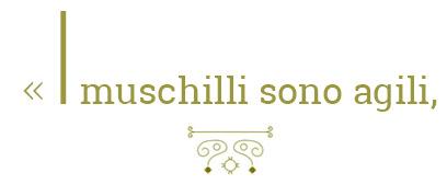 i_muschilli_sono_agili